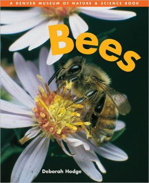Bees book written by Deborah Hodge, Julian Mulock