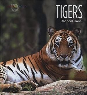 Tigers book written by Rachael Hanel