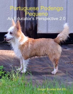 Portuguese Podengo Pequeno: An Educator's Perspective 2.0 written by Ginger Bowles