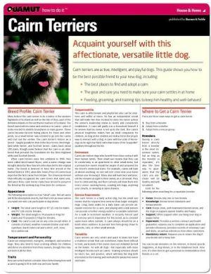 Cairn Terrier (Quamut) book written by Quamut