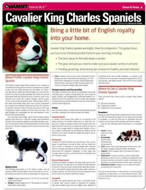 Cavalier King Charles Spaniel (Quamut) book written by Quamut