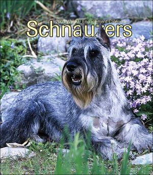 Schnauzers Weekly 2005 Calendar written by Not Available