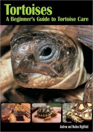Tortoises: A Beginner's Guide to Tortoise Care book written by Andrew Highfield