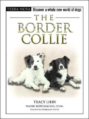 Border Collie (Terra Nova Dog Breed Series) written by Tracy Libby