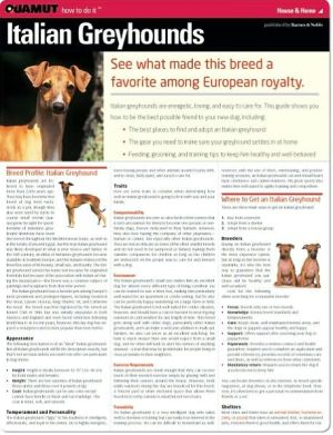 Italian Greyhound (Quamut) book written by Quamut