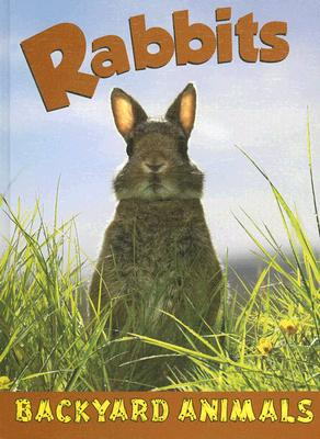 Rabbits book written by Christine Webster
