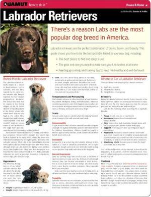 Labrador Retrievers (Quamut) book written by Quamut