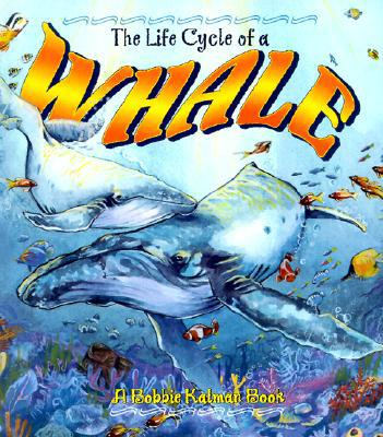 The Life Cycle of a Whale written by Bobbie Kalman