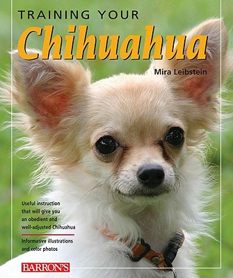 Training Your Chihuahua book written by Leibstein, Mira