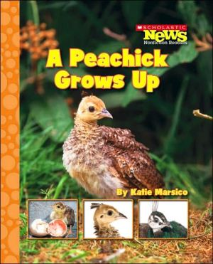 A Peachick Grows Up book written by Katie Marsico