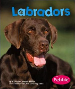 Labradors book written by Connie Colwell Miller