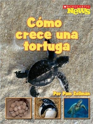 Como crece una tortuga/A Turtle Hatchling Grows Up book written by Pam Zollman