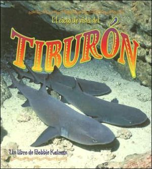 El ciclo de vida del tiburon (The Life Cycle of the Shark) book written by John Crossingham