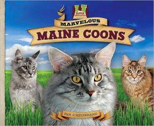 Marvelous Maine Coons book written by Pam Scheunemann