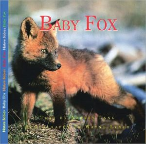 Baby Fox book written by Aubrey Lang
