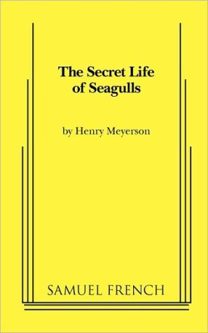 The Secret Life of Seagulls book written by Henry Meyerson