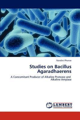 Studies on Bacillus Agaradhaerens written by Nandini Phanse