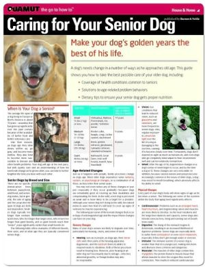 Caring for Your Senior Dog (Quamut) book written by Quamut