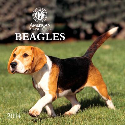 Beagles book written by American Kennel Club