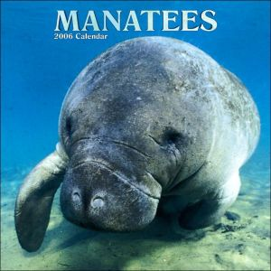 Manatees 2006 Calendar written by Not Available