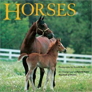 Horses book written by Laura Driscoll