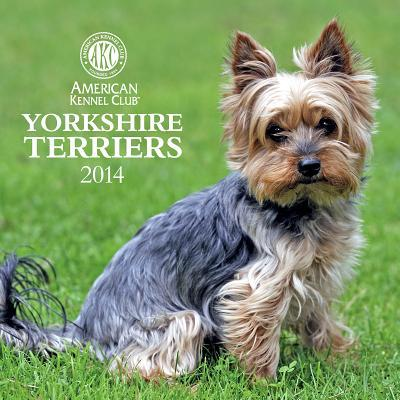 Yorkshire Terriers book written by American Kennel Club