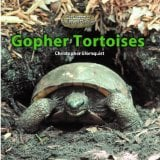 Gopher Tortoises book written by Christopher Blomquist
