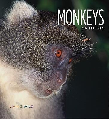 Monkeys book written by Melissa Gish