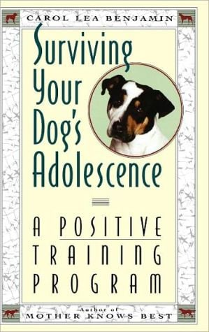 Surviving Your Dog's Adolescence: A Positive Training Program book written by Carol Lea Benjamin