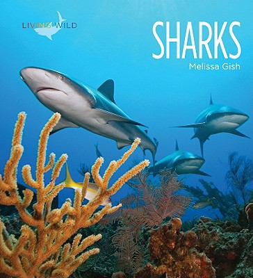 Sharks book written by Melissa Gish