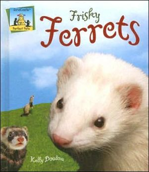 Frisky Ferrets book written by Kelly Doudna