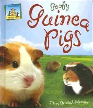 Goofy Guinea Pigs book written by MaryElizabeth Salzmann