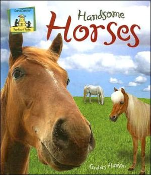 Handsome Horses book written by Anders Hanson