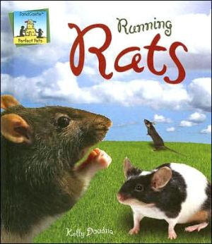 Running Rats book written by Kelly Doudna