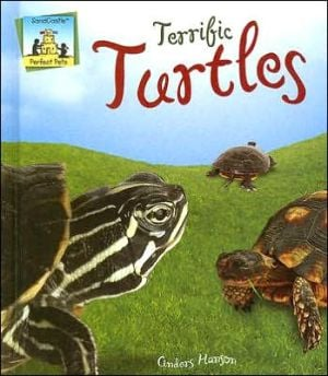 Terrific Turtles book written by Anders Hanson