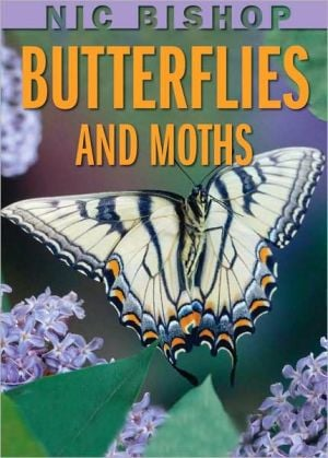 Nic Bishop Butterflies And Moths book written by Nic Bishop