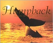 Humpback: Images of Hawaii's Whales book written by Mutual Publishing Company