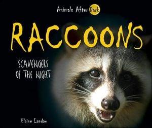 Raccoons: Scavengers of the Night book written by Elaine Landau