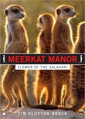 Meerkat Manor: Flower of the Kalahari book written by Tim Clutton-brock