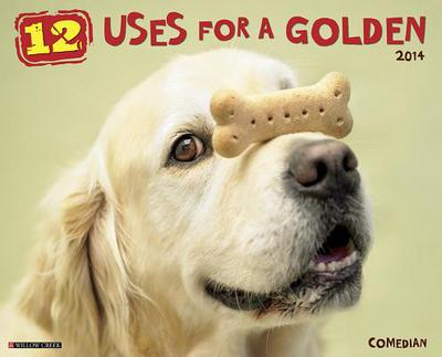 12 Uses for a Golden Wall Calendar book written by Not Available (NA)
