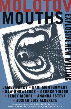 Molotov Mouths: Explosive New Writing written by James Tracy