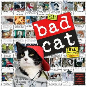 2011 Bad Cat Wall Calendar book written by Workman Publishing