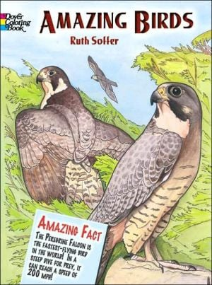Amazing Birds book written by Ruth Soffer