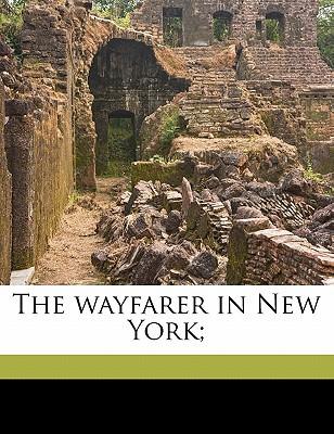 The Wayfarer in New York; book written by Martin, Edward Sandford