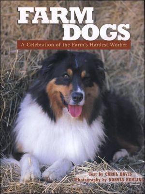 Farm Dogs : A Celebration of the Farm's Hardest Worker book written by Carol Davis, Norvia Behling