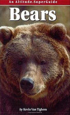 Bears book written by Kevin Vantighem