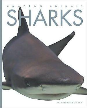 Sharks book written by Valerie Bodden