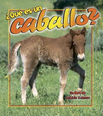 Que es un caballo? (What is a Horse?) book written by Bobbie Kalman