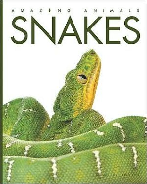 Snakes book written by Valerie Bodden