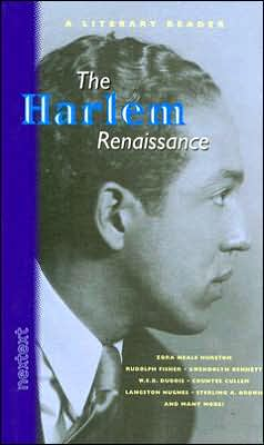 Harlem Renaissance book written by Nextext